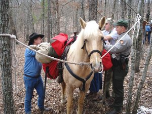 Back Country Horsemen of East Tennessee