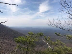 Morrell Trail to Holston Mtn Firetower @ Flatwoods Rd. at Big Creek Rd